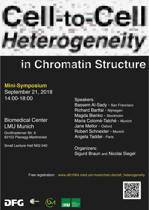 cell_heterogeneity_poster 2